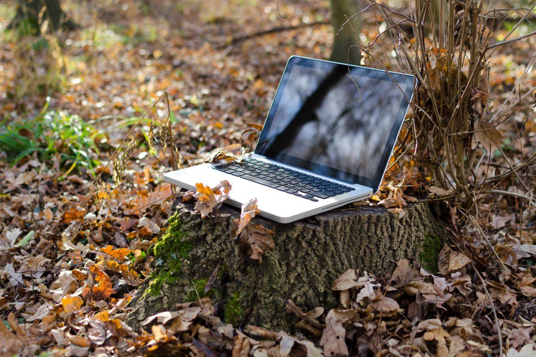 negative-space-laptop-tree-leaves-autumn-fall-lukas-thumb-1